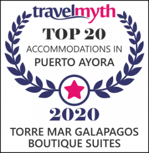 Travelmyth Top 20 Accommodation